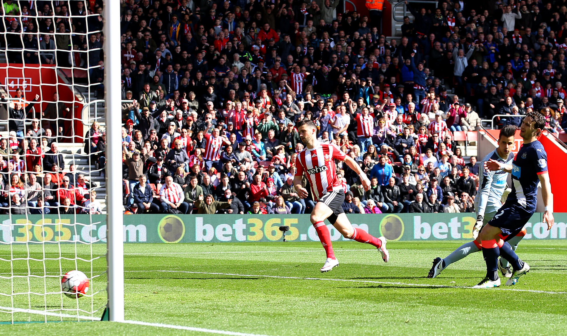 Shane Long scores during the Barclays Premier League match between Southampton and Newcastle United at St Mary's Stadium, Southampton, England on 9 April 2016.