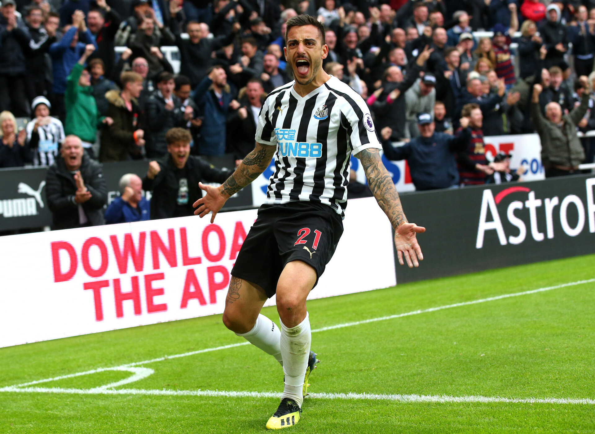 NEWCASTLE UPON TYNE, ENGLAND - AUGUST 26:  Joselu of Newcastle United celebrates after scoring his team's first goal during the Premier League match between Newcastle United and Chelsea FC at St. James Park on August 26, 2018 in Newcastle upon Tyne, United Kingdom.  (Photo by Alex Livesey/Getty Images)