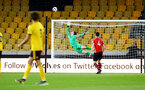 WOLVERHAMPTON, ENGLAND - MARCH 05:  Harry lewis (middle) during the PL2 U23's match between Wolverhampton Wanders and Southampton FC at Molineux Stadium in Wolverhampton, England, on March 05, 2019 (Photo by James Bridle - Southampton FC/Southampton FC via Getty Images)