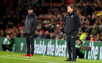SOUTHAMPTON, ENGLAND - APRIL 05: Ralph Hasenhuttl of Southampton during the Premier League match between Southampton FC and Liverpool FC at St Mary's Stadium on April 6, 2019 in Southampton, United Kingdom. (Photo by Matt Watson/Southampton FC via Getty Images)