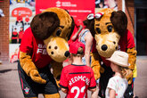 Saints announce new Fanzone at St Mary's