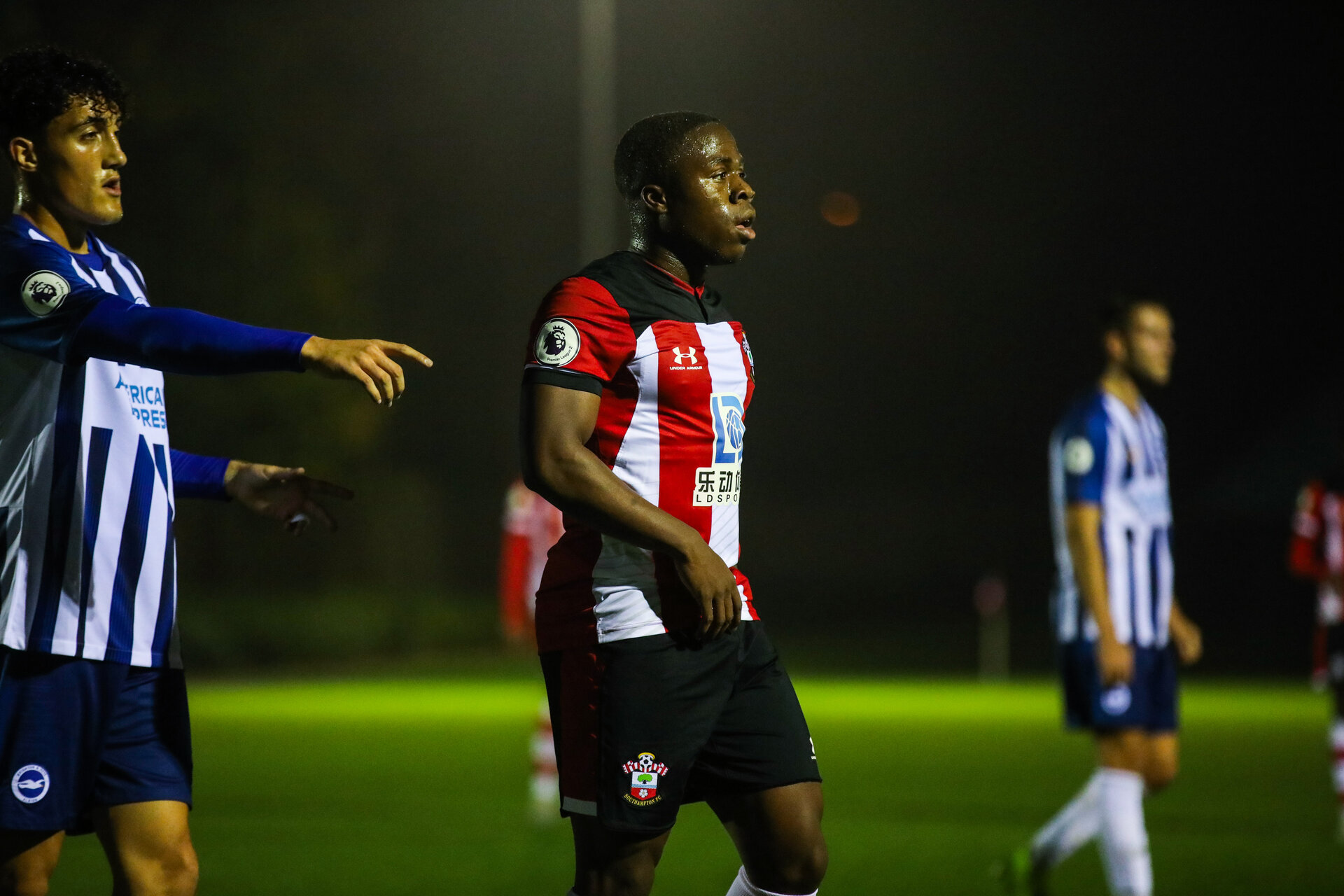 SOUTHAMPTON, ENGLAND - NOVEMBER 01: Michael Obafemi of Southampton FC during the Premier League 2 match between Southampton FC and Brighton & Hove Albion at the Staplewood Campus on November 01, 2019 in Southampton, England
