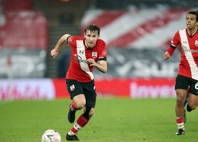 Hasenhüttl has faith in Vokins